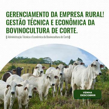 Administração Técnica e Econômica da Bovinocultura de Corte