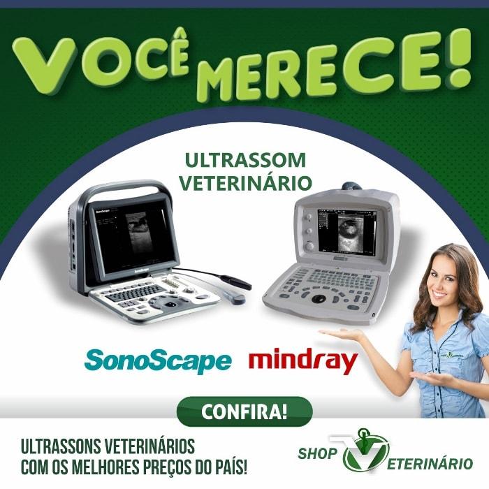 Ultrassons