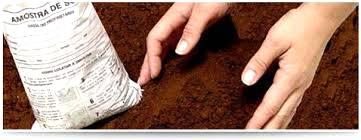 Análise do solo: ferramenta indispensável para a agricultura