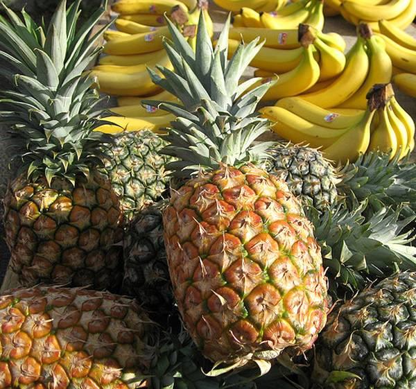 Cientistas da UNESP criam plástico a partir de frutas