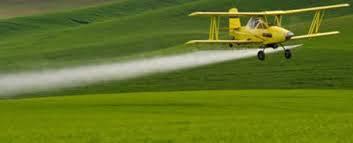 Utilização do silício diminui uso de agrotóxicos