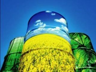 Equipamento de baixo custo para produção de biodiesel
