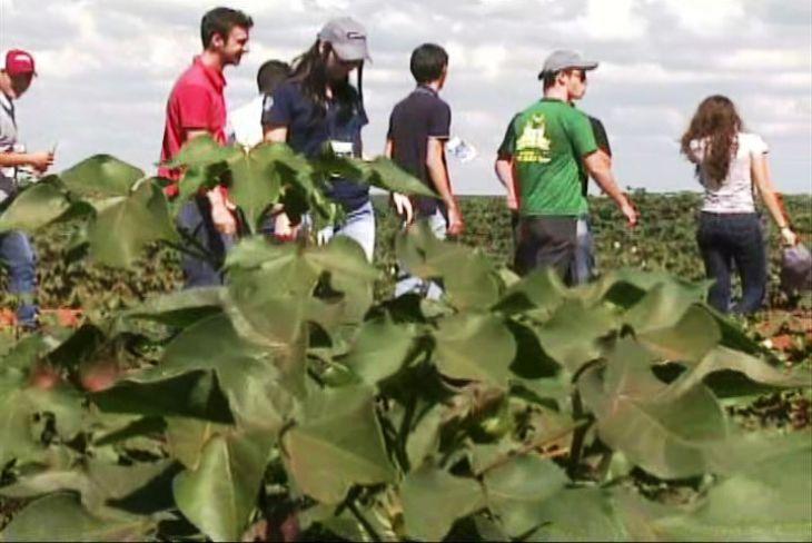 Vagas para jovens agricultores no Pronatec Agro