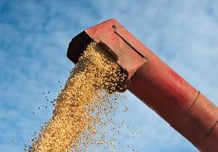 Produção de grãos no Brasil: safra 2014/2015