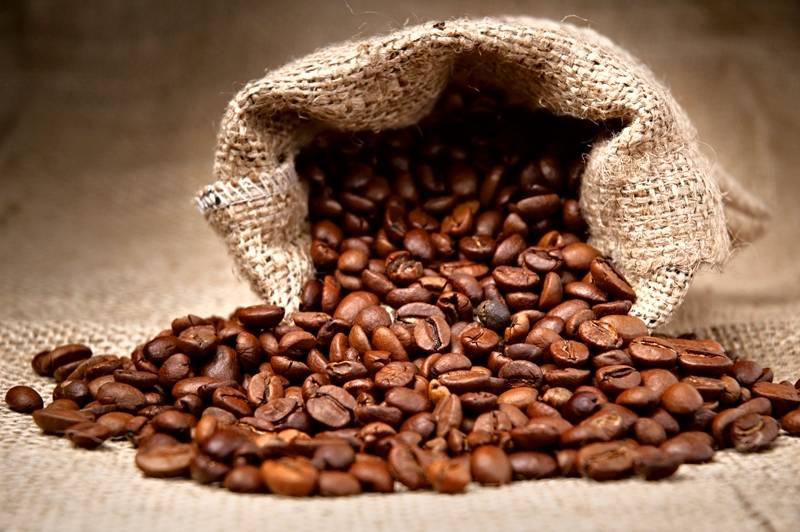 Chuva em demasia atrapalha a produção de café