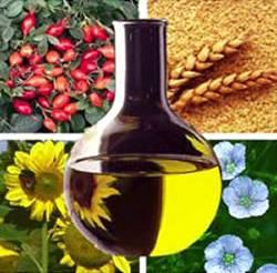 Uso do Biodiesel no Brasil