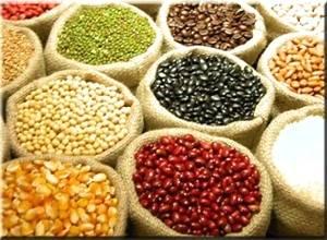Preços dos produtos agropecuários registra queda