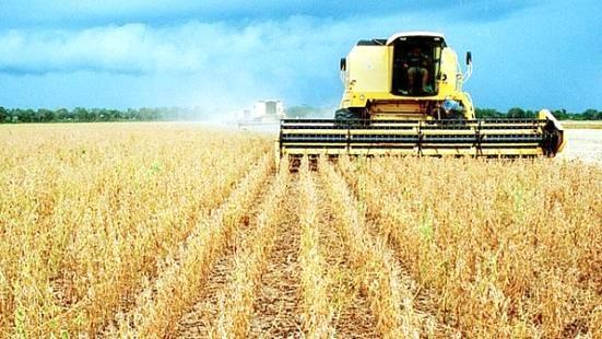 """""""Agropecuária deverá registrar expansão nos próximos anos"""", diz superintendente do Imea"""