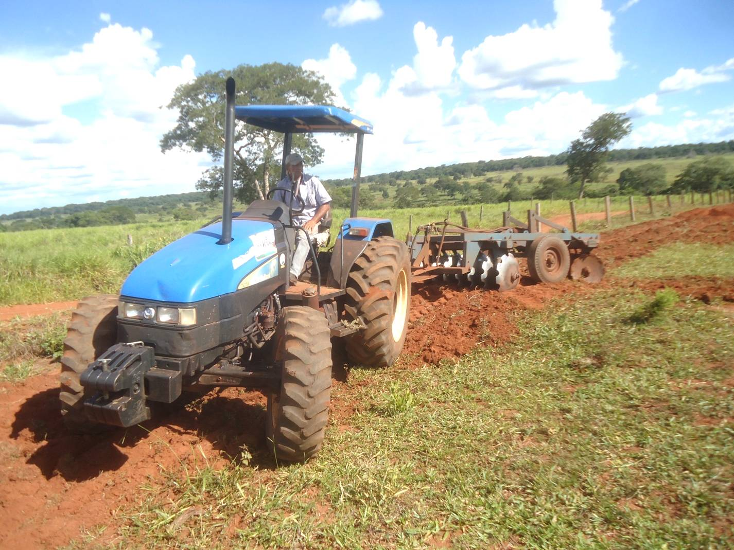 Criatividade pode ser aliada do pequeno produtor rural