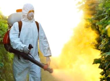 Erros na aplicação de defensivos pode trazer prejuízos ao produto e ao meio ambiente