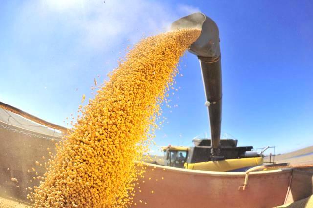 Safra de grãos no Brasil deverá bater novo recordo de produção