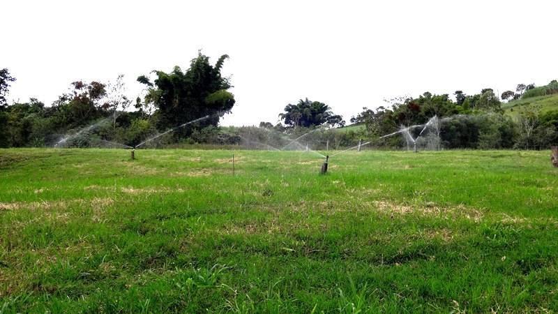 Agricultura irrigada de precisão diminui custos produtivos e aumenta a lucratividade