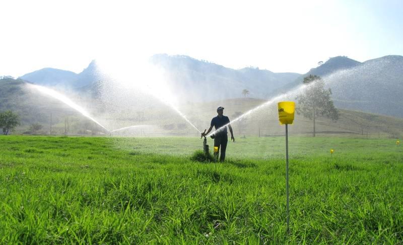 Aprenda a implantar um eficiente sistema de irrigação de pastos