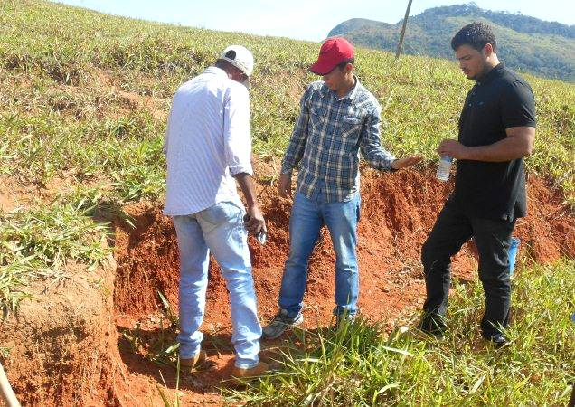 Conhecimento especializado pode fazer a diferença no processo de fertilização do solo