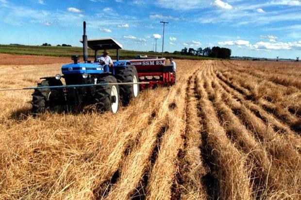 Plantio direto como opção sustentável de inúmeros projetos agrícolas
