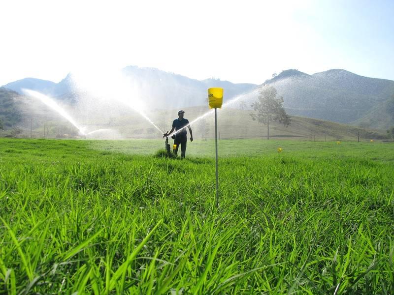 Descubra como projetos de irrigação podem impactar no seu negócio