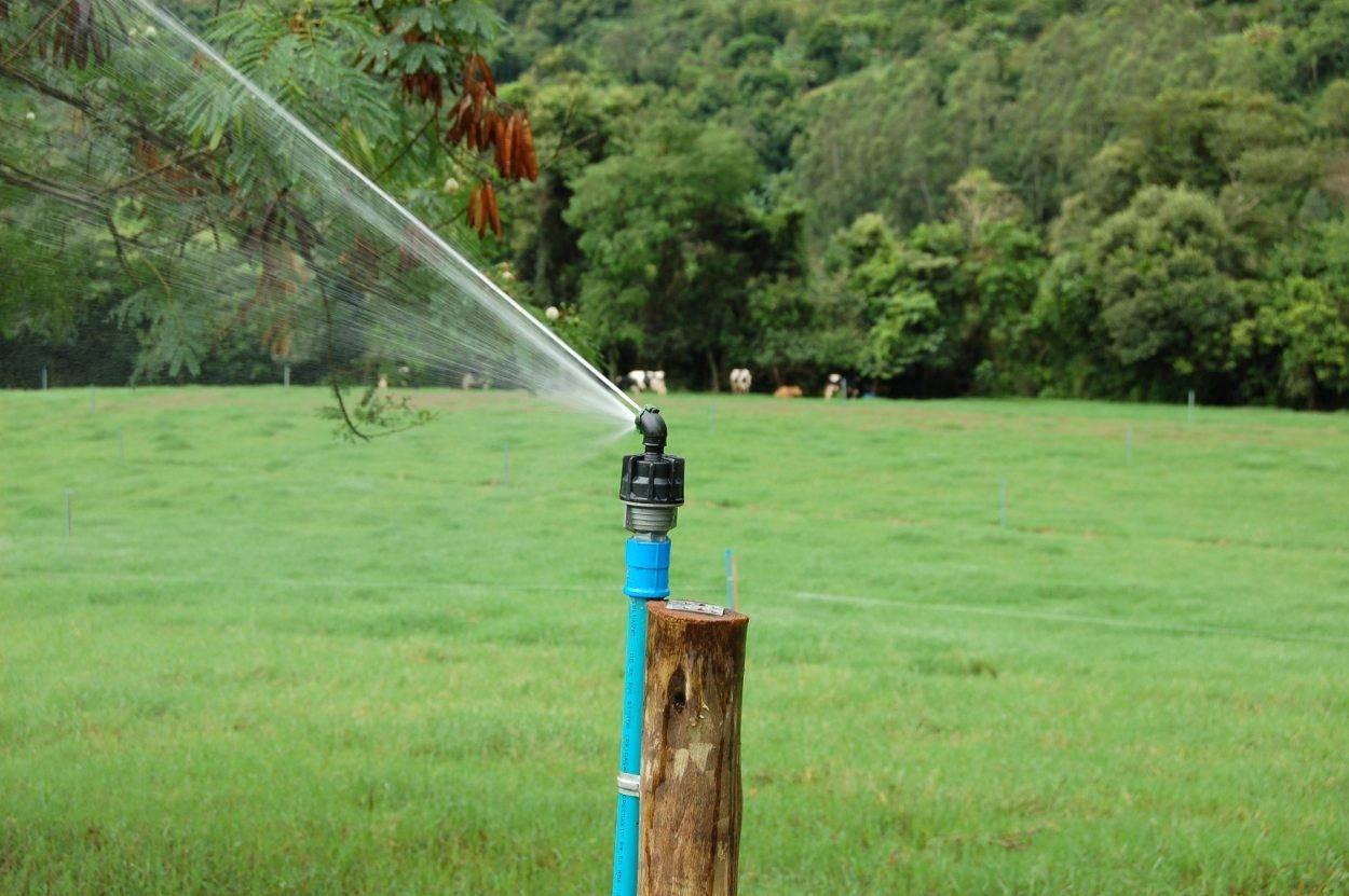 A irrigação pode ser sua principal aliada na recuperação de pastagens degradadas