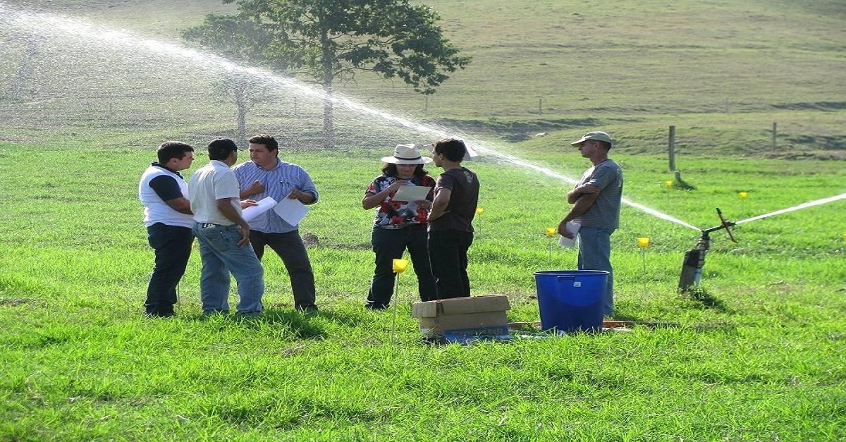 Irrigação localizada: Aproveite melhor a água