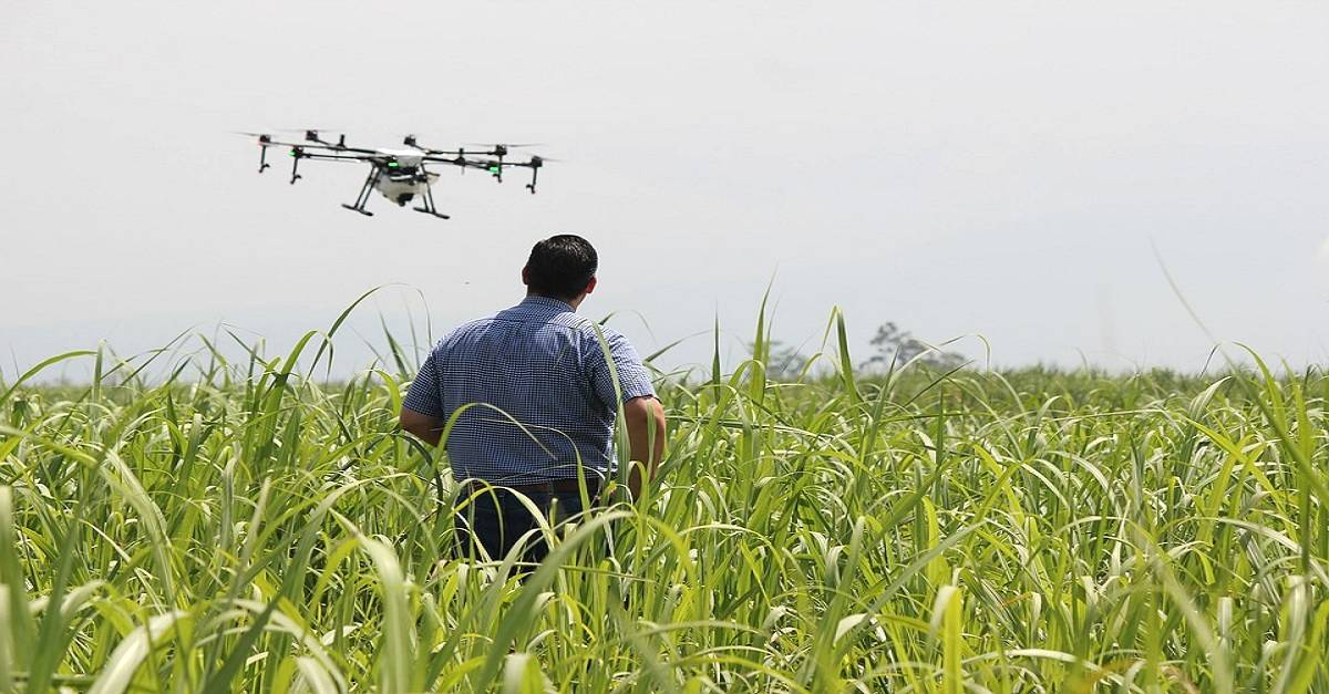 GPS na agricultura: Conheça as vantagens