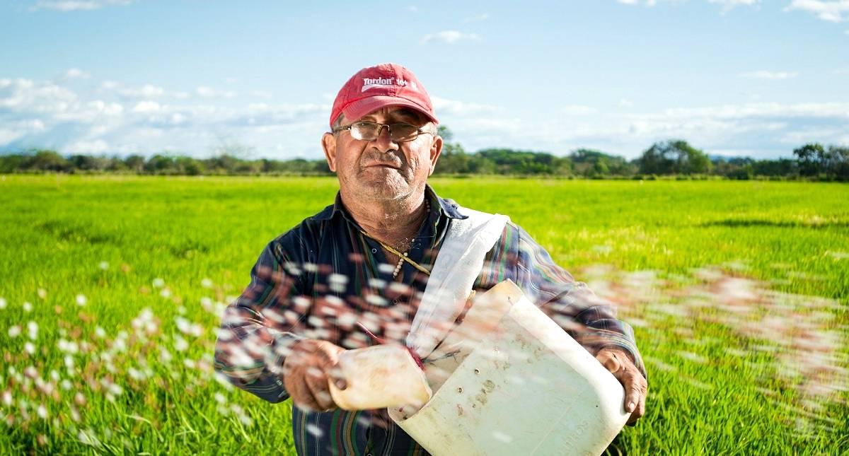 20 de março - Dia mundial da agricultura: Sua importância vai muito além do fornecimento de alimentos!