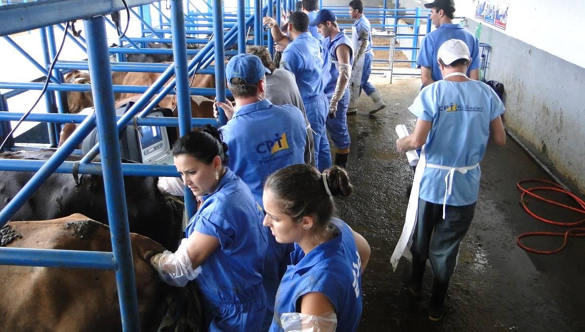 Novo conceito de pós-graduação em reprodução e produção de bovinos jamais vista no país!