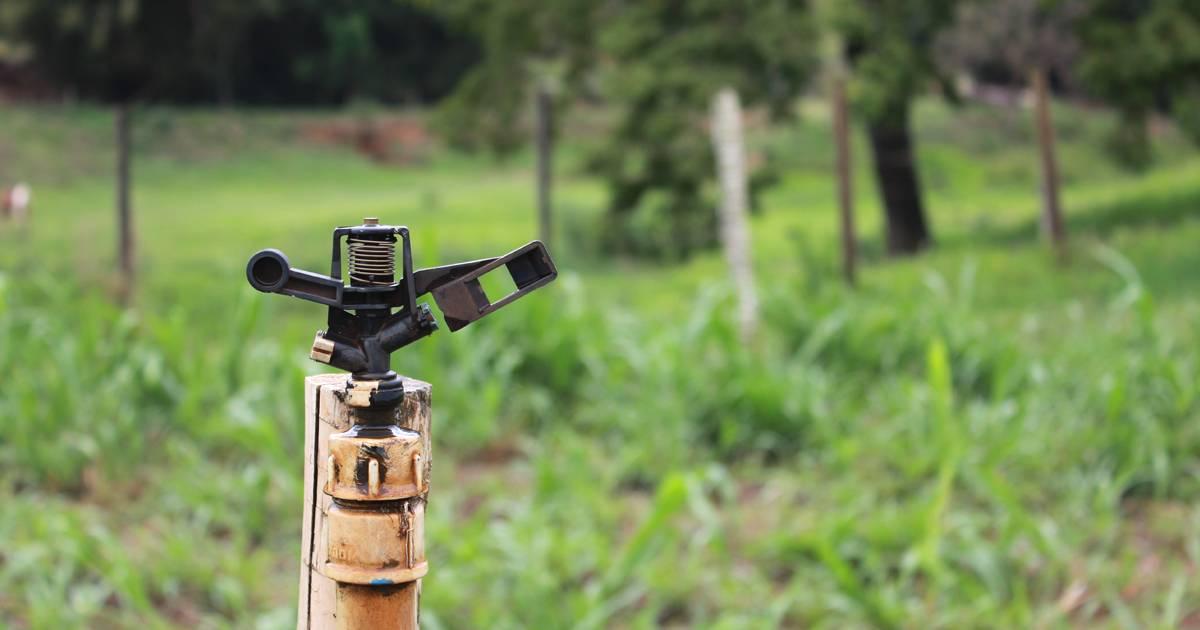 Irrigação: por onde começar?