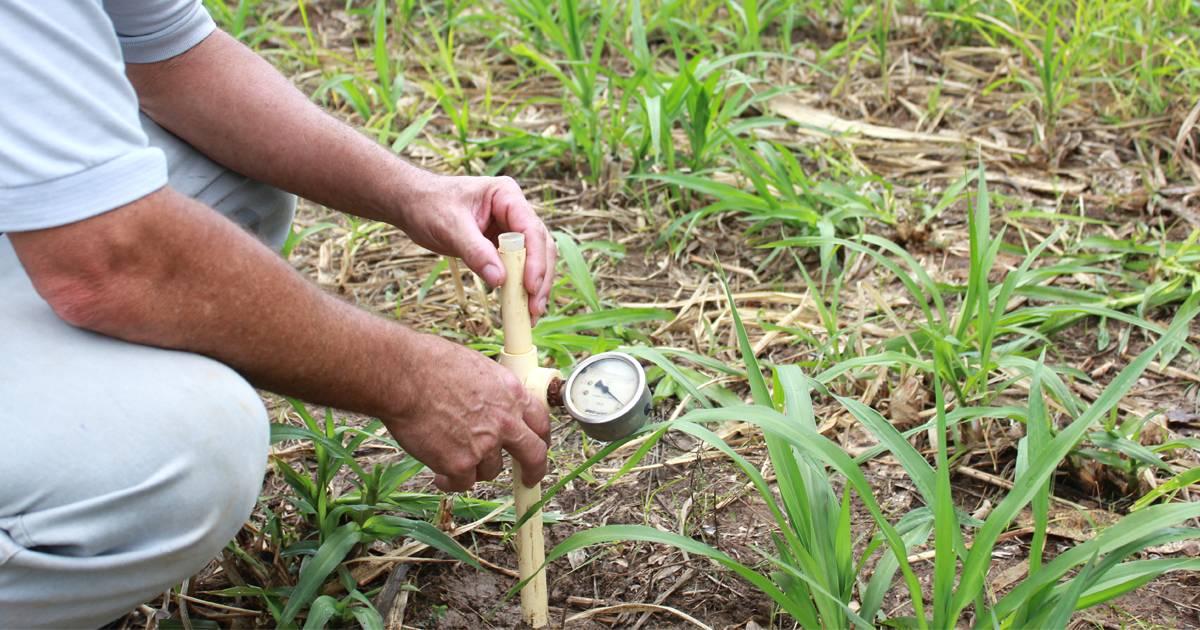 Manejo de Irrigação: a importância das tecnologias no período de chuvas