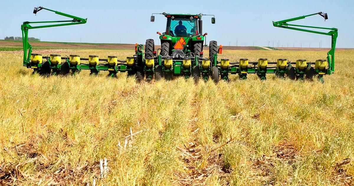 Plantio direto: opção sustentável para projetos agrícolas