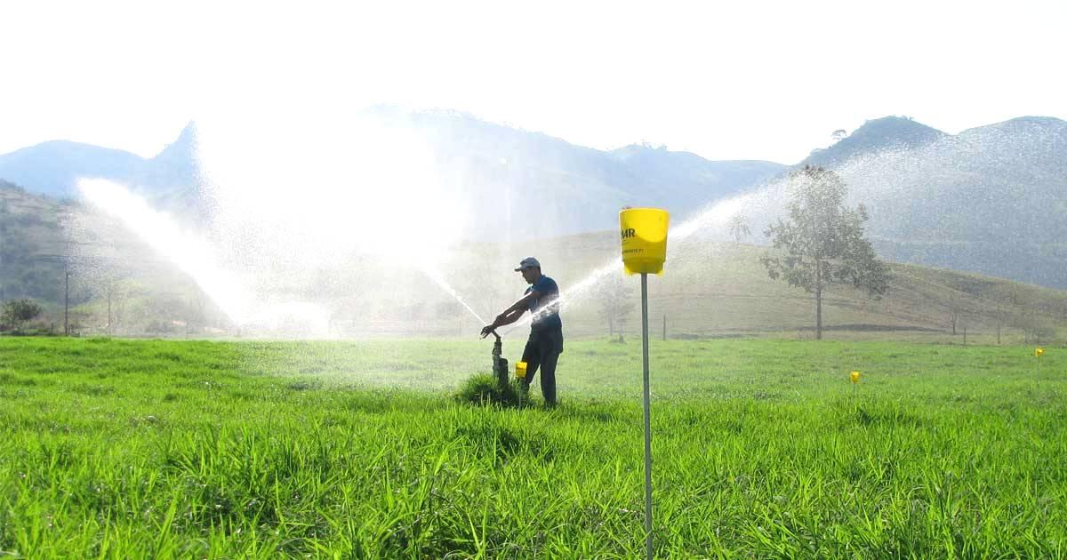 Irrigação de pastagens: grande aliada para evitar pastagens degradadas!