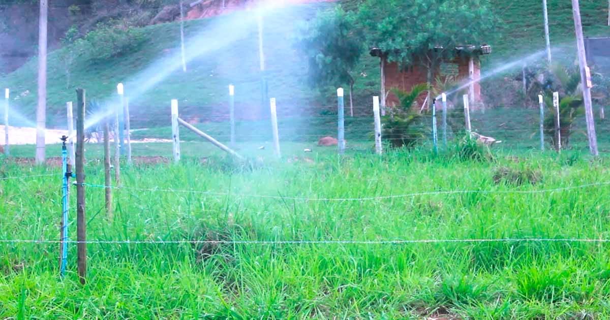 Agricultura irrigada: quais são os sistemas mais utilizados?
